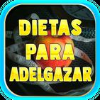 Dietas Para Adelgazar Gratis en Español
