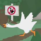 Goose Simulation