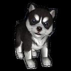 Puppies care - Virtual dog